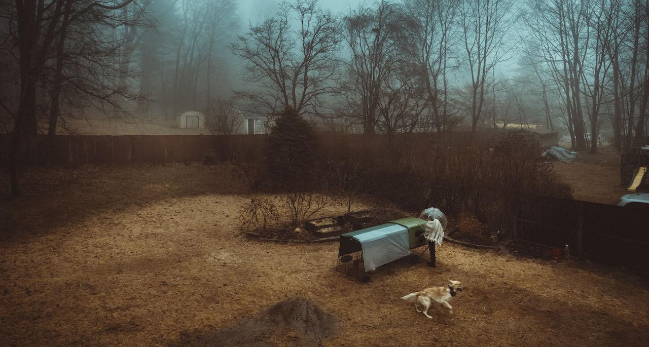 Ein Hühnerhalter sammelt im Herbst Eier ein